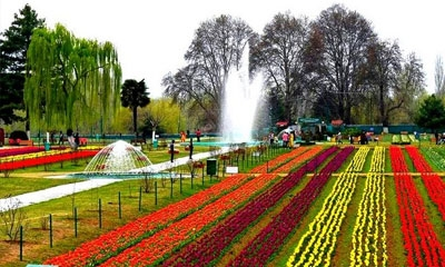 Splendors of Kashmir